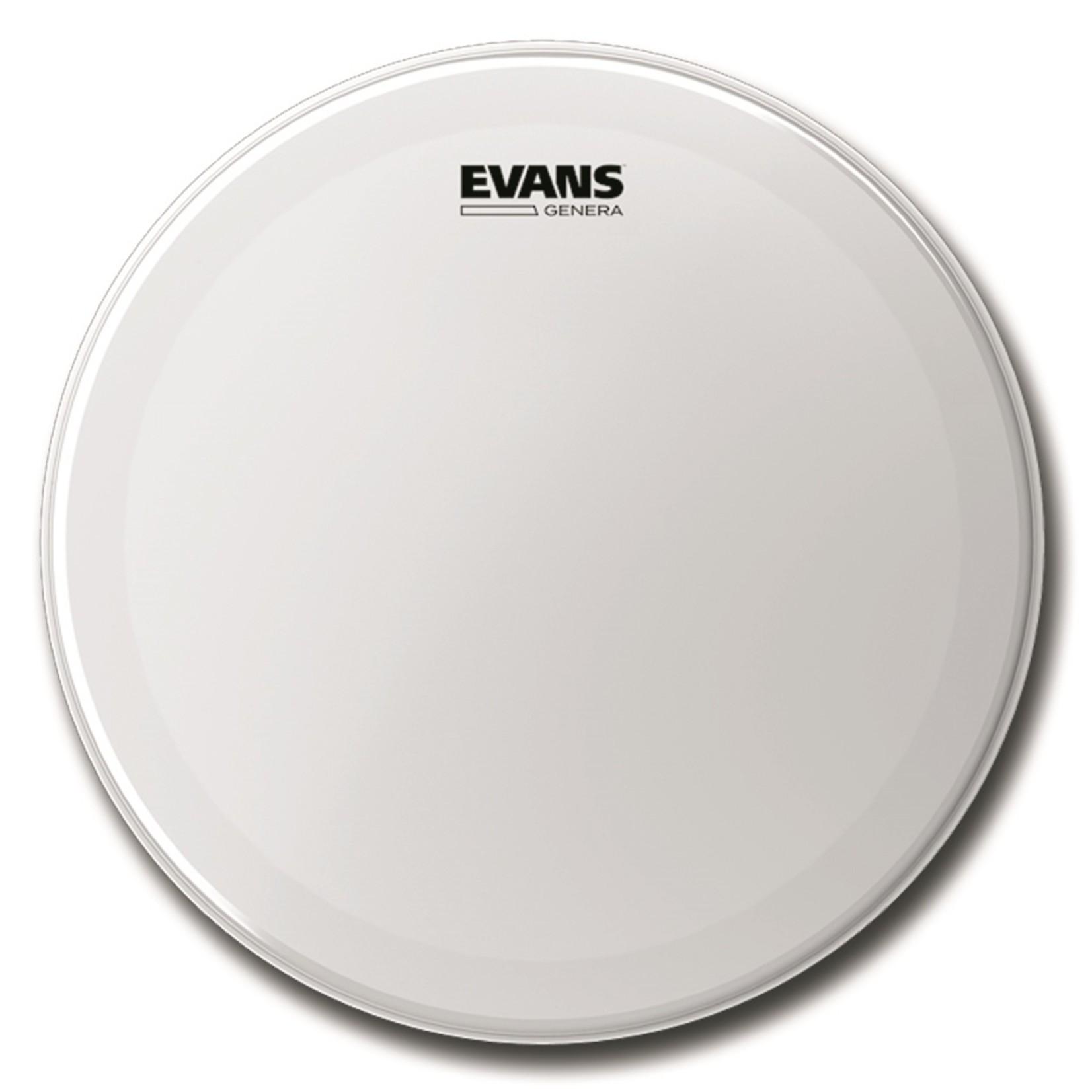 Evans Evans Coated Genera