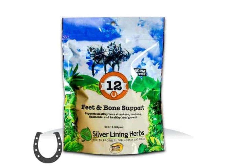 #12 FEET&BONE SUPPORT
