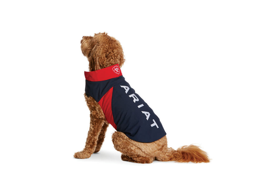 10029268  Team SoftShell Dog Jacket