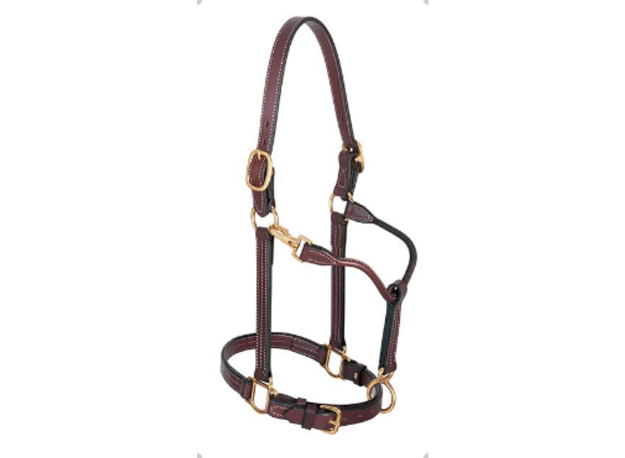 """10800-51-166 1"""" TRACK HORSE HALTER LEATHER"""
