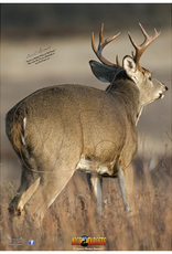 Nice Target Nice Target Deer Quartering Away Right 5 (Each)