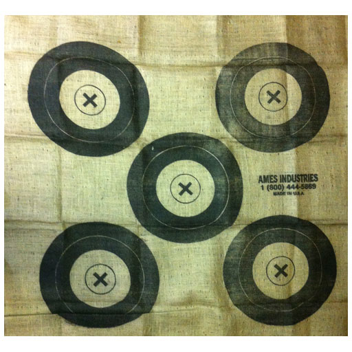 AMES Ames All Weather Burlap Target Face 5 Spot