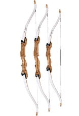"Bear Archery Bear Bullseye X 54"" 29Lb RH"