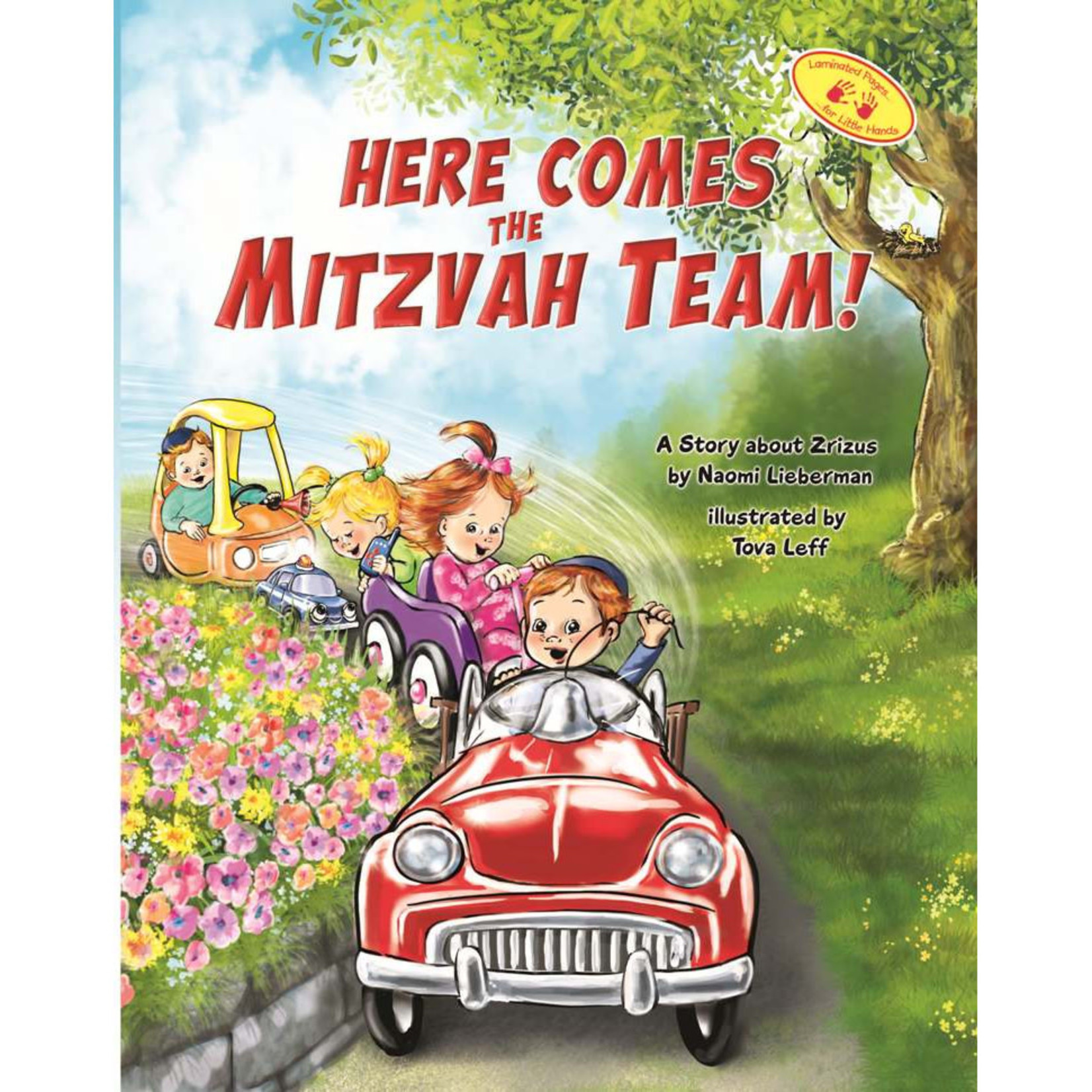 Here Comes the Mitzvah Team
