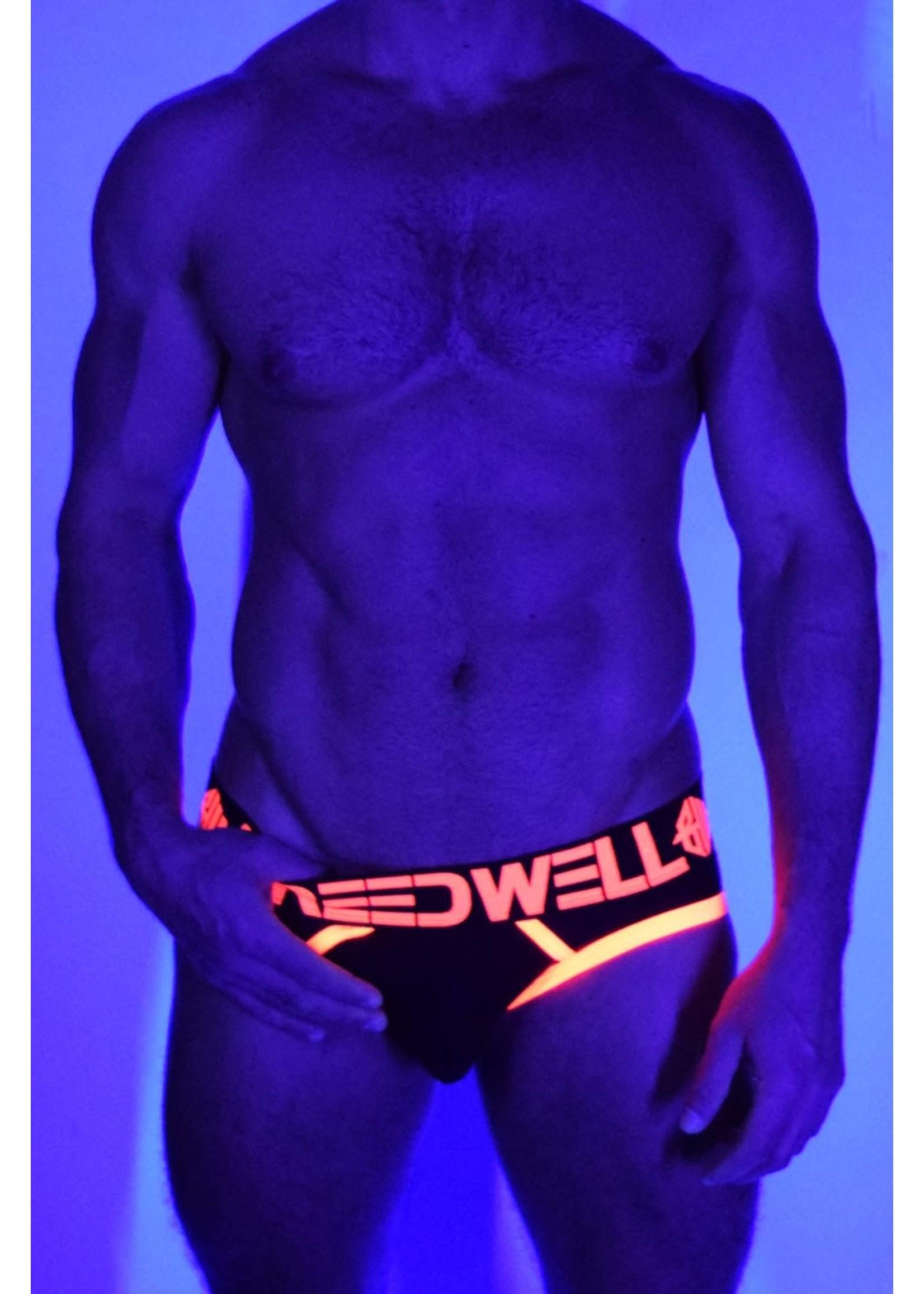 Breedwell Breedwell Blacklight Circuit Brief