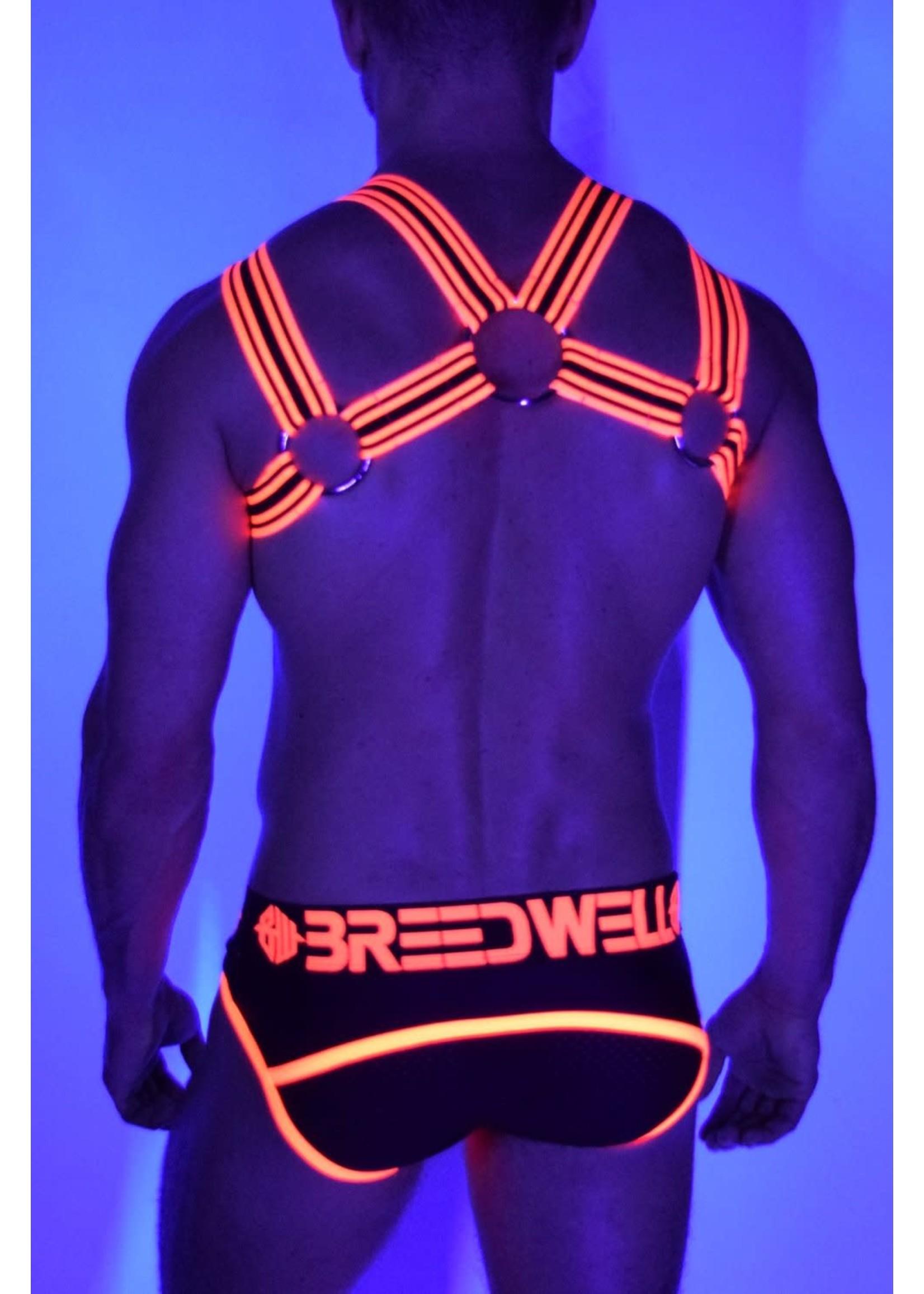 Breedwell Breedwell Blacklight Elastic Base