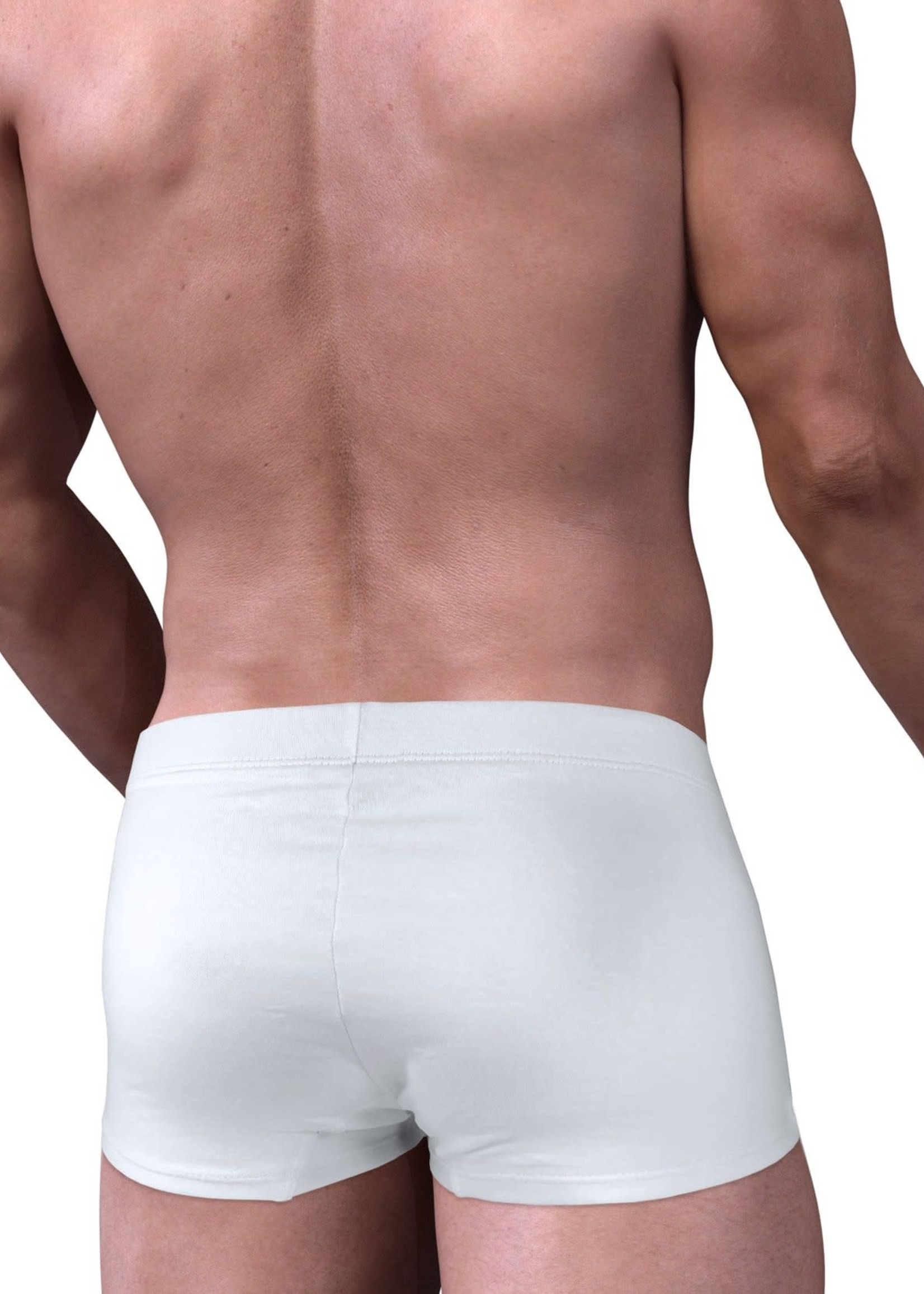 WildmanT WildmanT Stretch Cotton Boxer