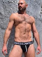 Breedwell Breedwell Stripes Jock