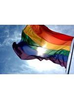 Flag: Rainbow Pride  3' x 5'