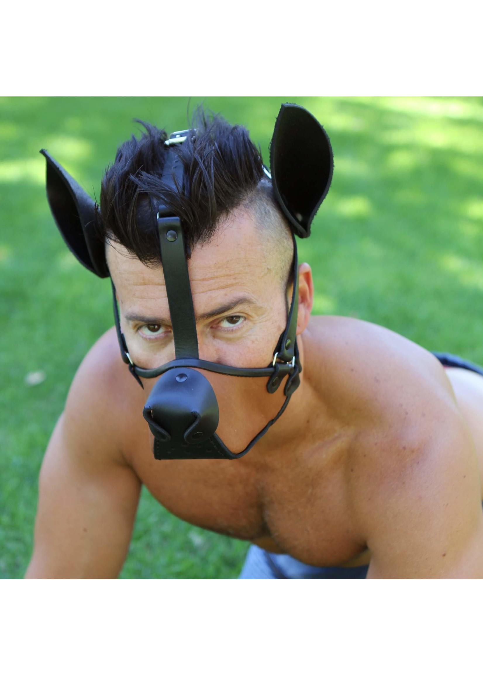 665 Leather 665 Dog Training Muzzle