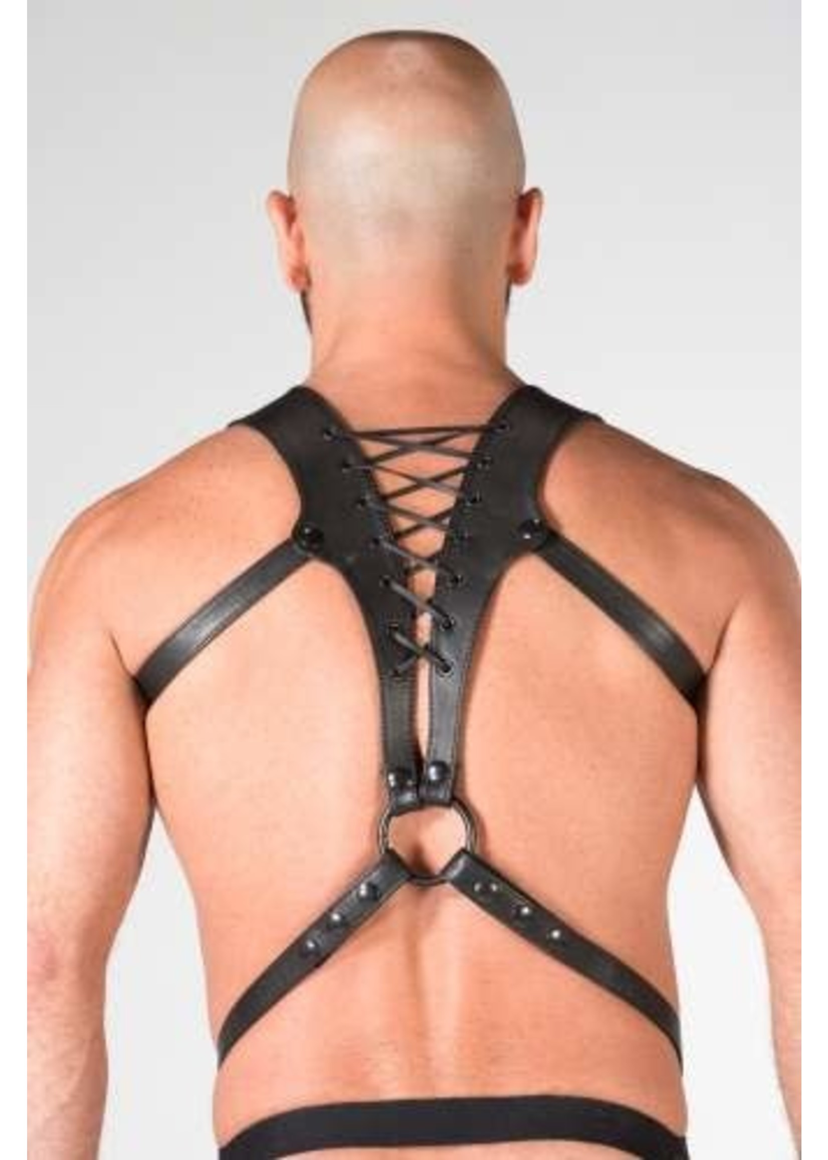 665 Leather 665 Spartan Leather Harness