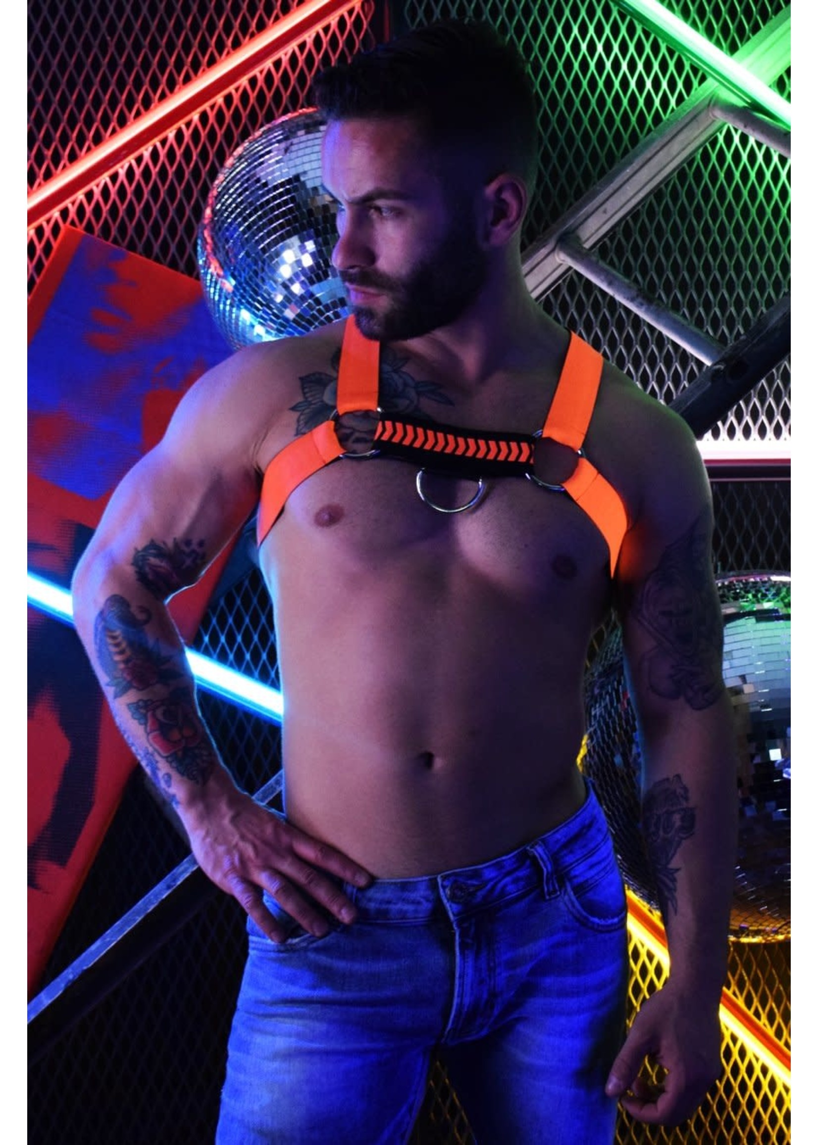 Breedwell Breedwell Nightcrawler Harness