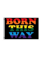 Rainbow Born This Way Flag 3' x 5'