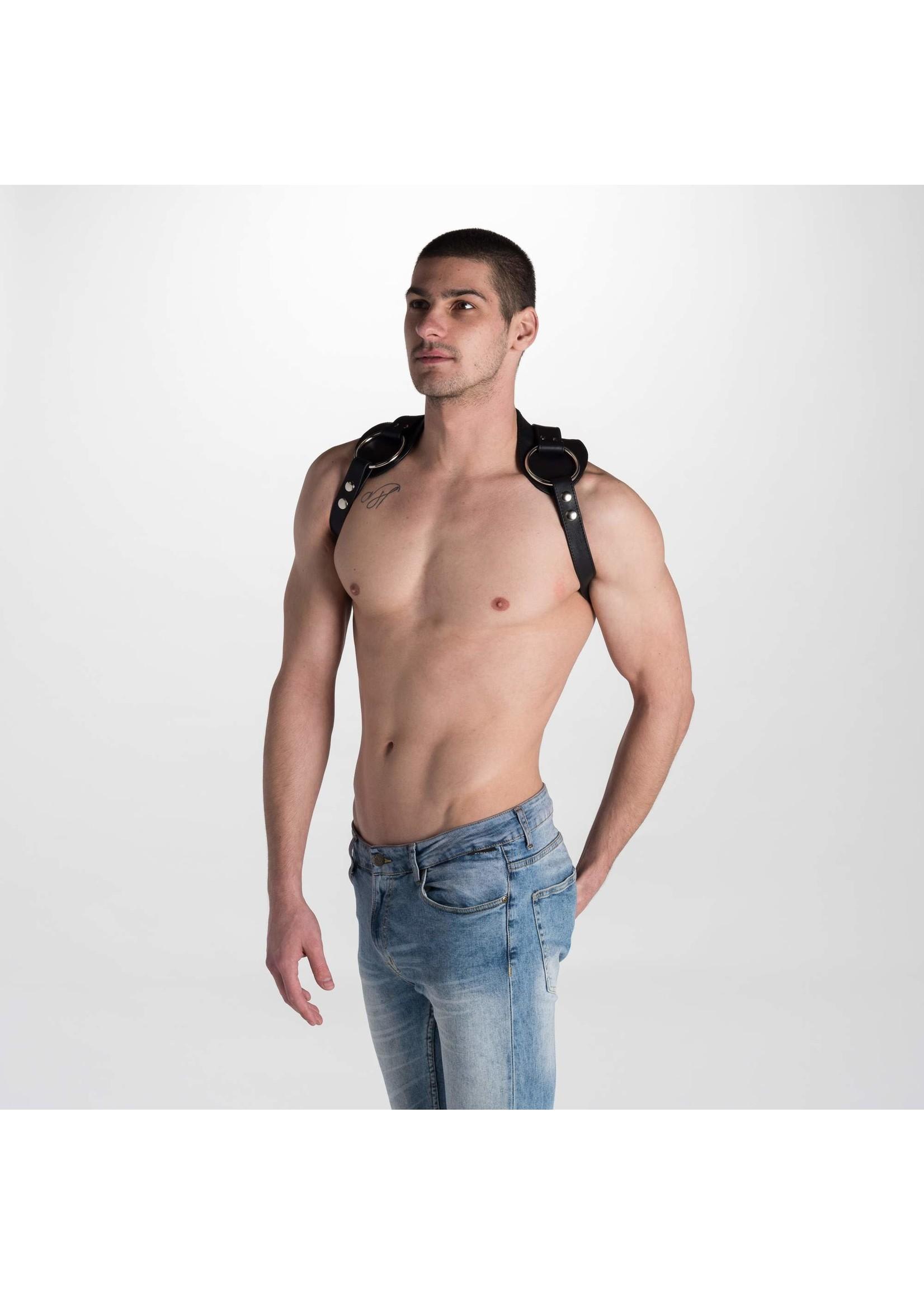 665 Leather 665 Titan Leather Harness