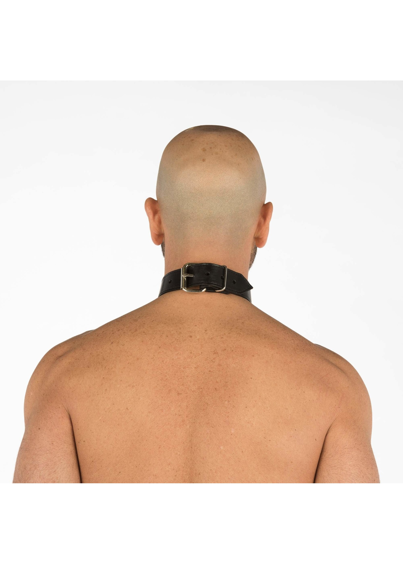 """665 Leather 665 Leather Collar 1.25"""" Wide"""