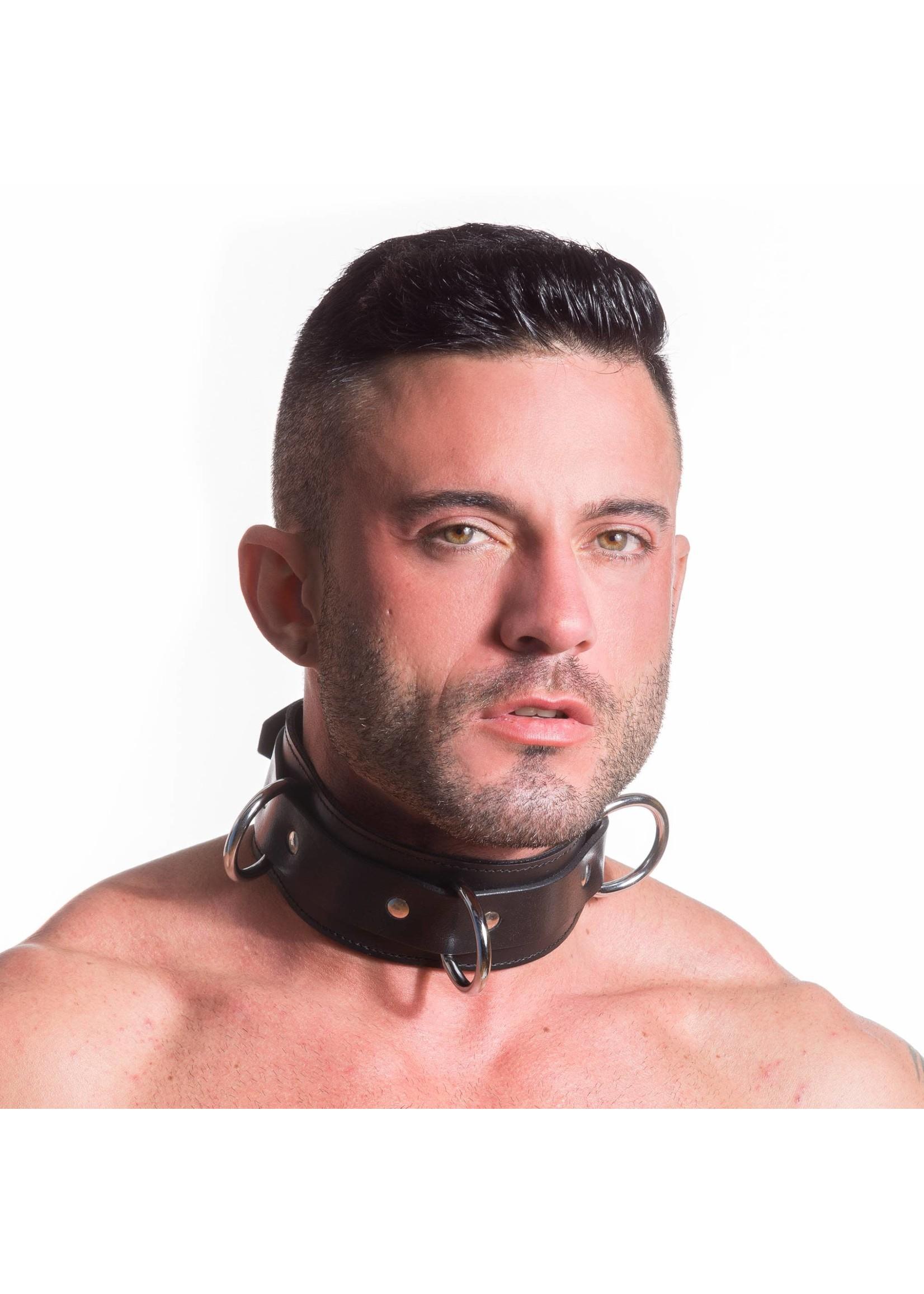 665 Leather 665 Locking Bondage Collar