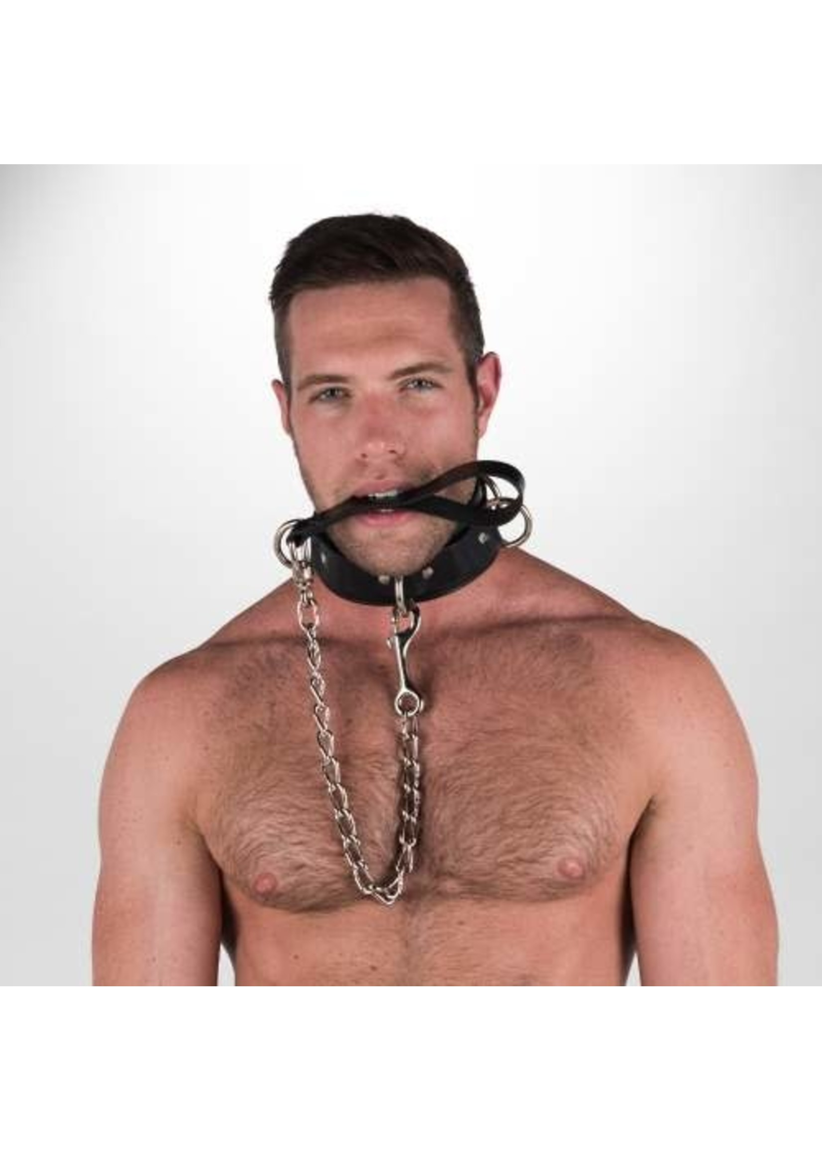 665 Leather 665 Chain Leash with Leather Strap