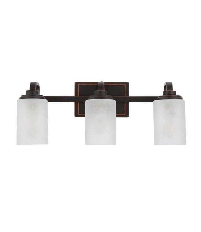 Hampton Bay Hampton Bayt Regan Brushed Nickel Vanity Light with Clear Glass Shades