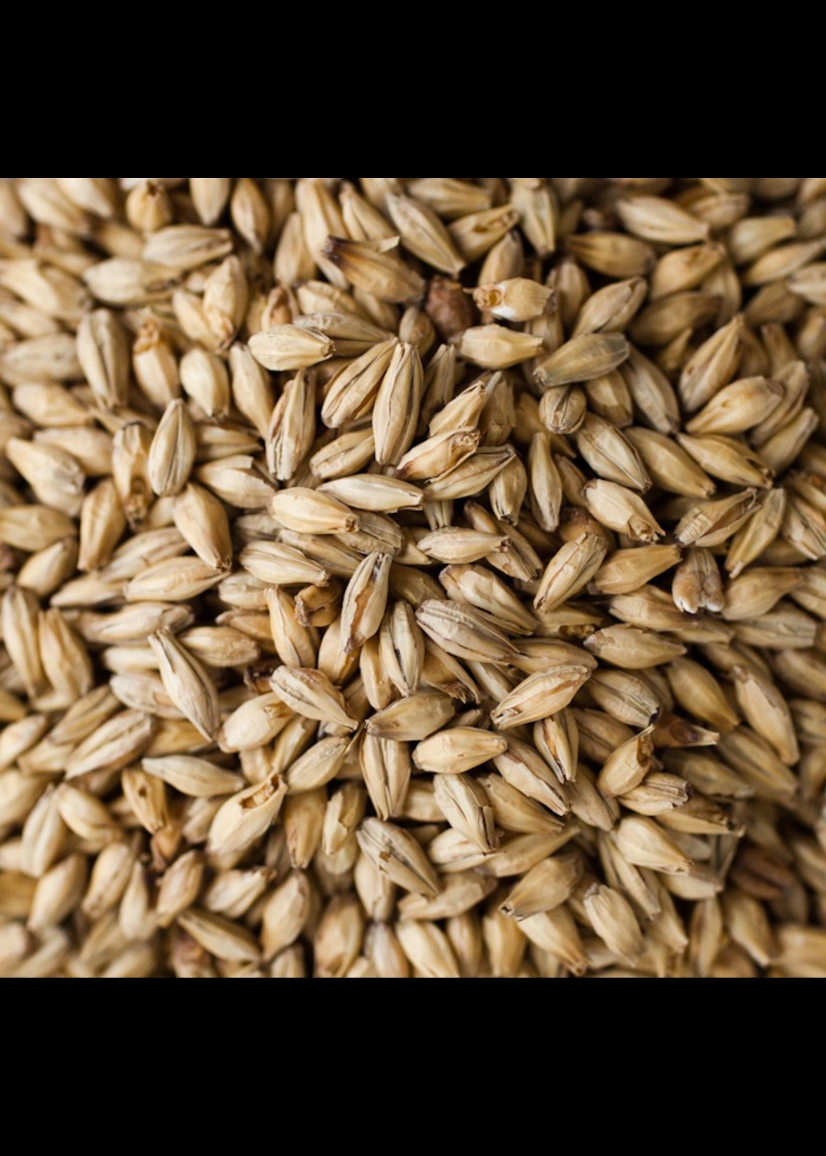 Grain Briess Goldpils Vienna Malt - 10 LB
