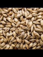Grain Dingemans Biscuit Malt - C21 - 1 LB