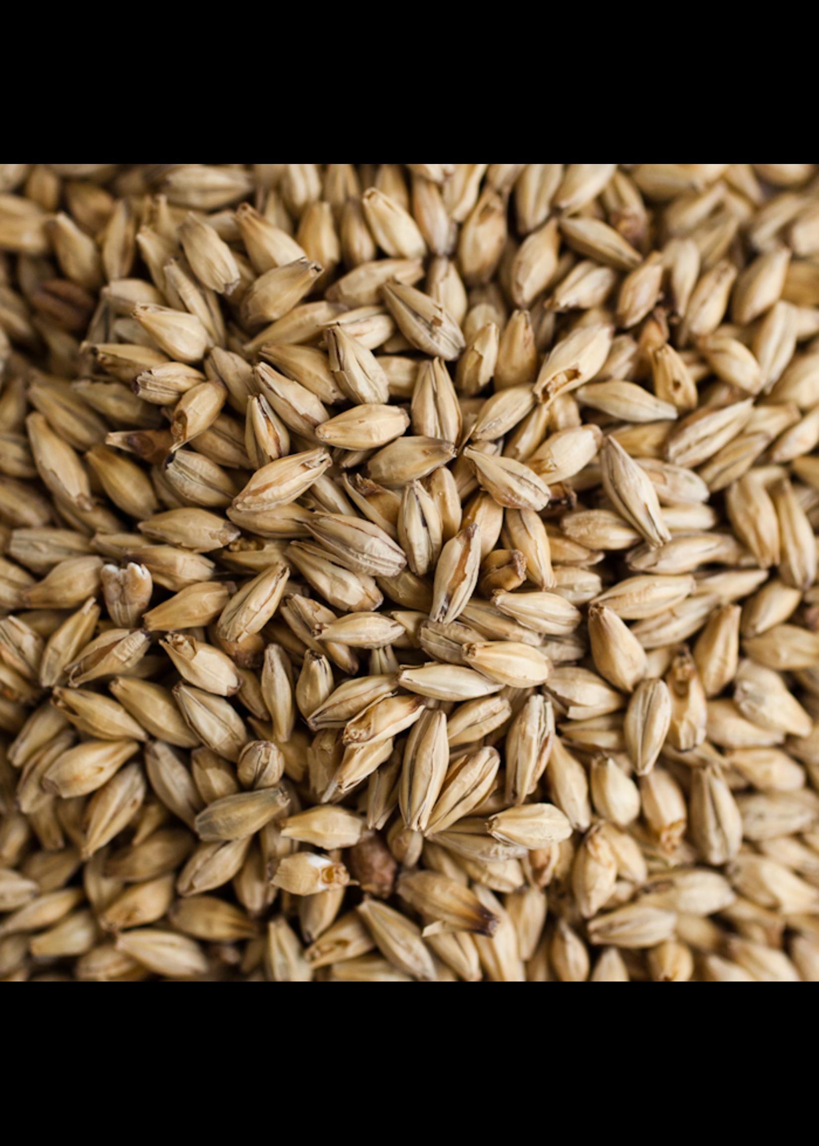 Grain Dingemans Pilsen Malt - 1 LB