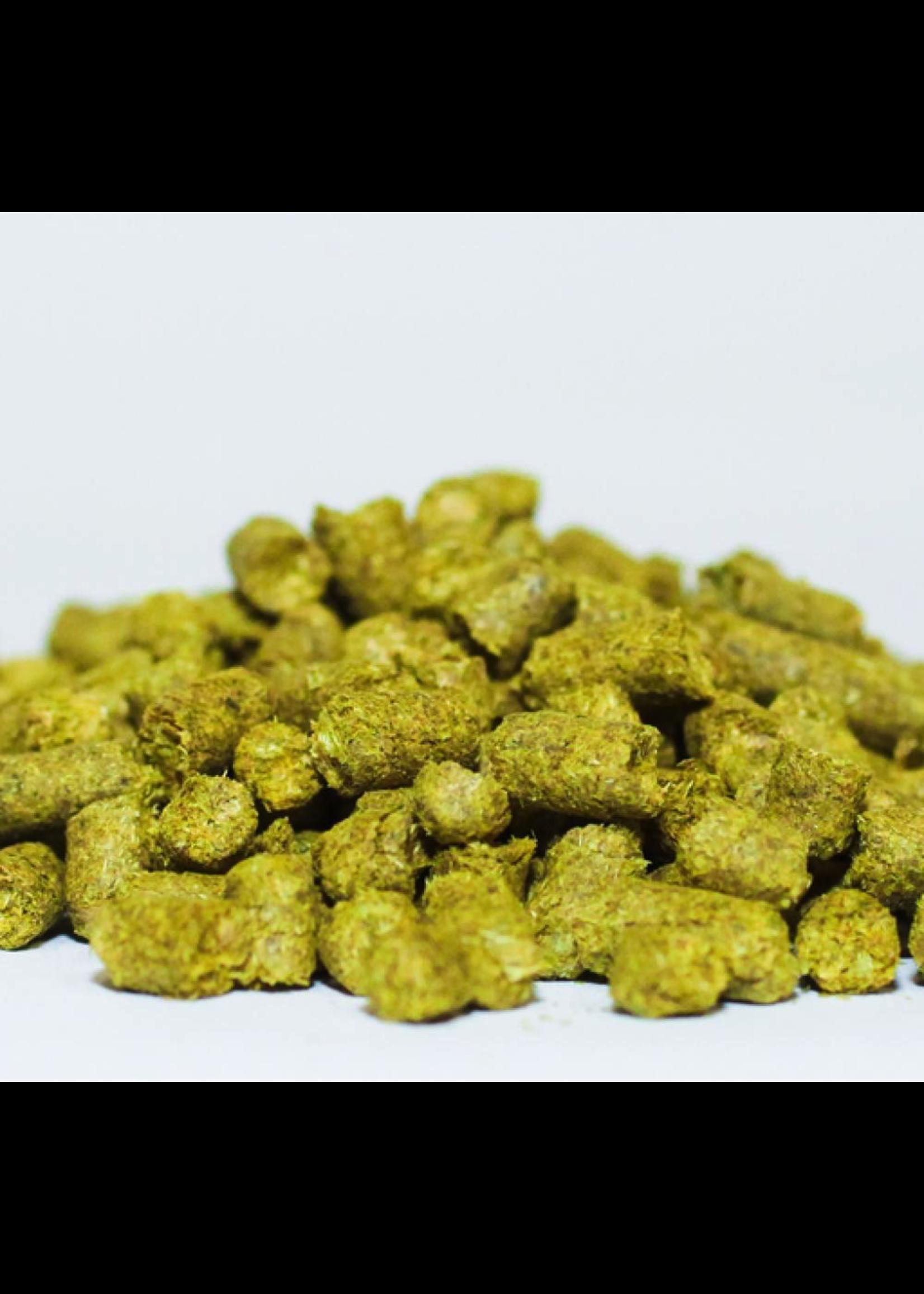 Hops Brewer's Gold Hops (German) - Pellets - 1 LB