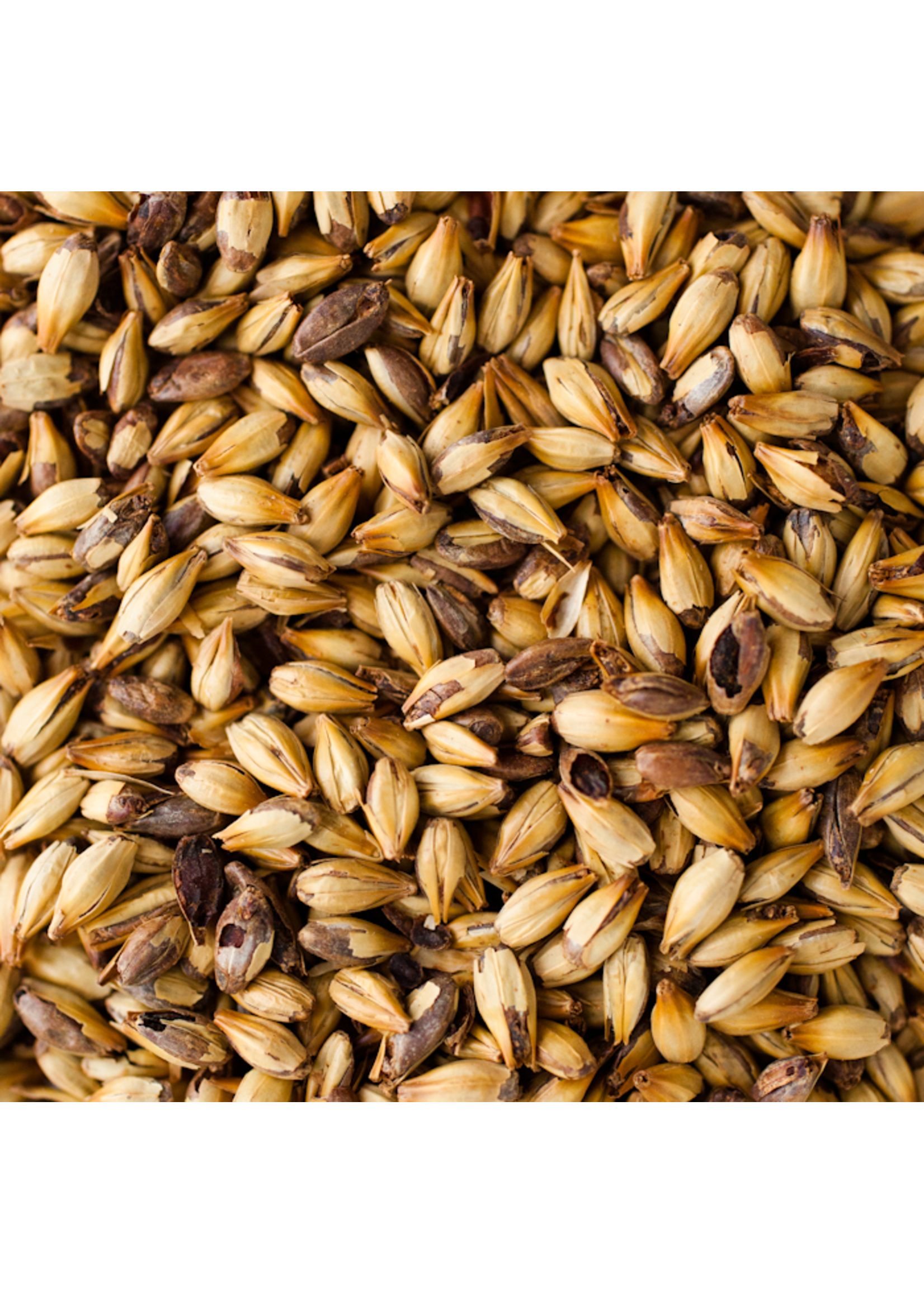 Grain Briess 2-Row Caramel 120L Malt - C44 - 1 LB