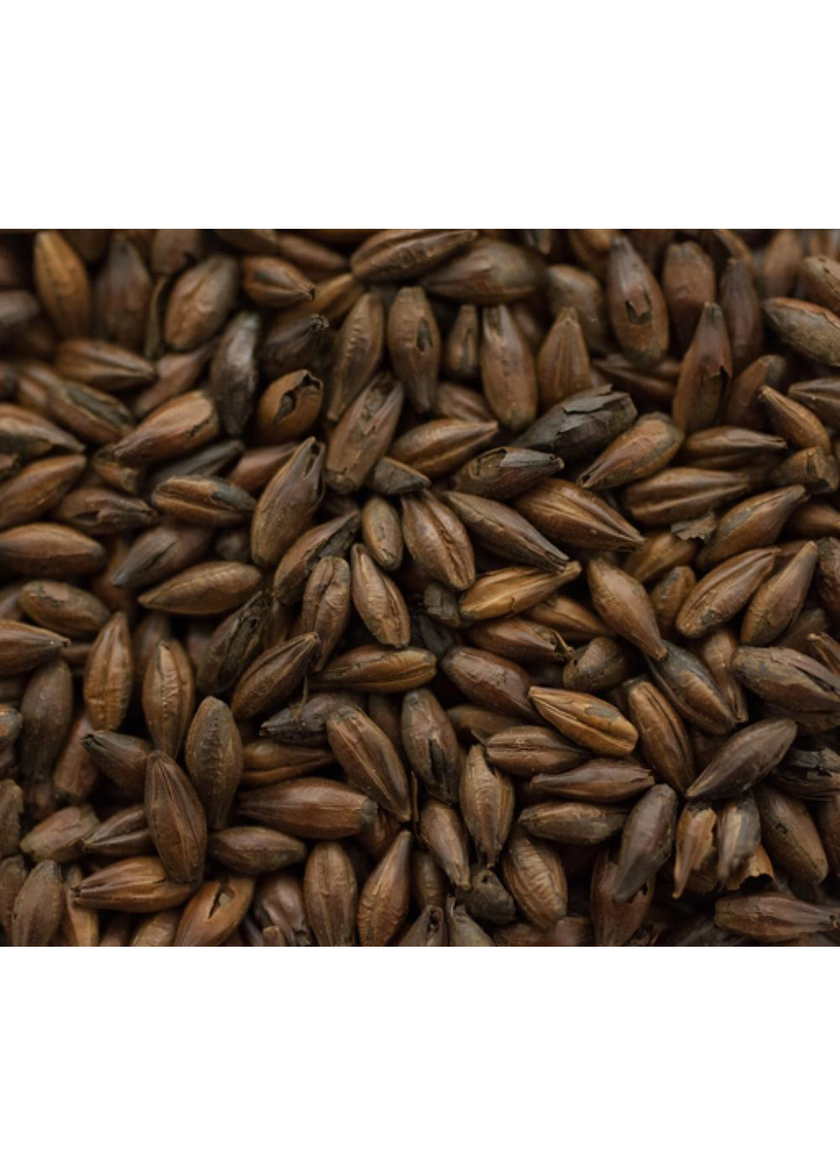 Grain Swaen© - Blackswaen Barley Malt - F32 - 1 LB
