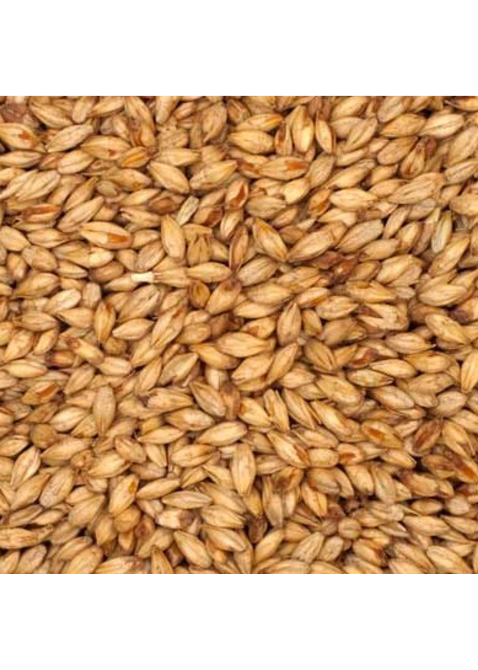 Grain Briess Mesquite Smoked Malt - B46 - 1 LB