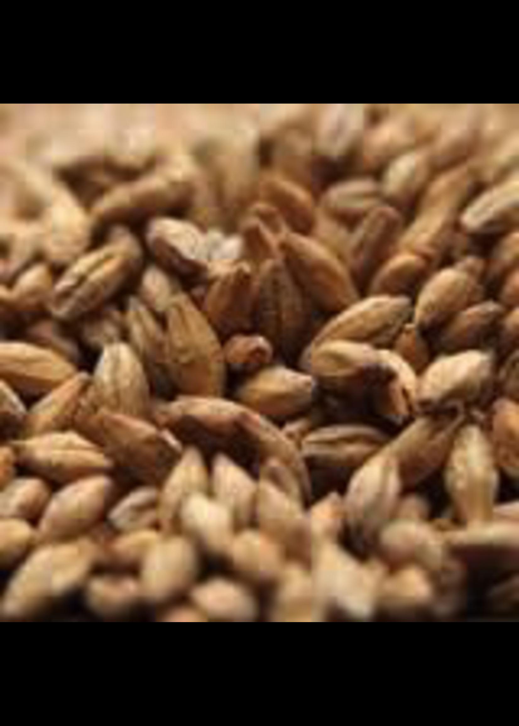 Grain Avangard Malz Premium Pilsen Malt - 1 LB