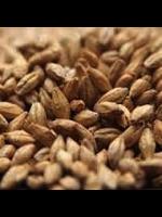 Grain Avangard Malz Premium Pilsen Malt - 10LB