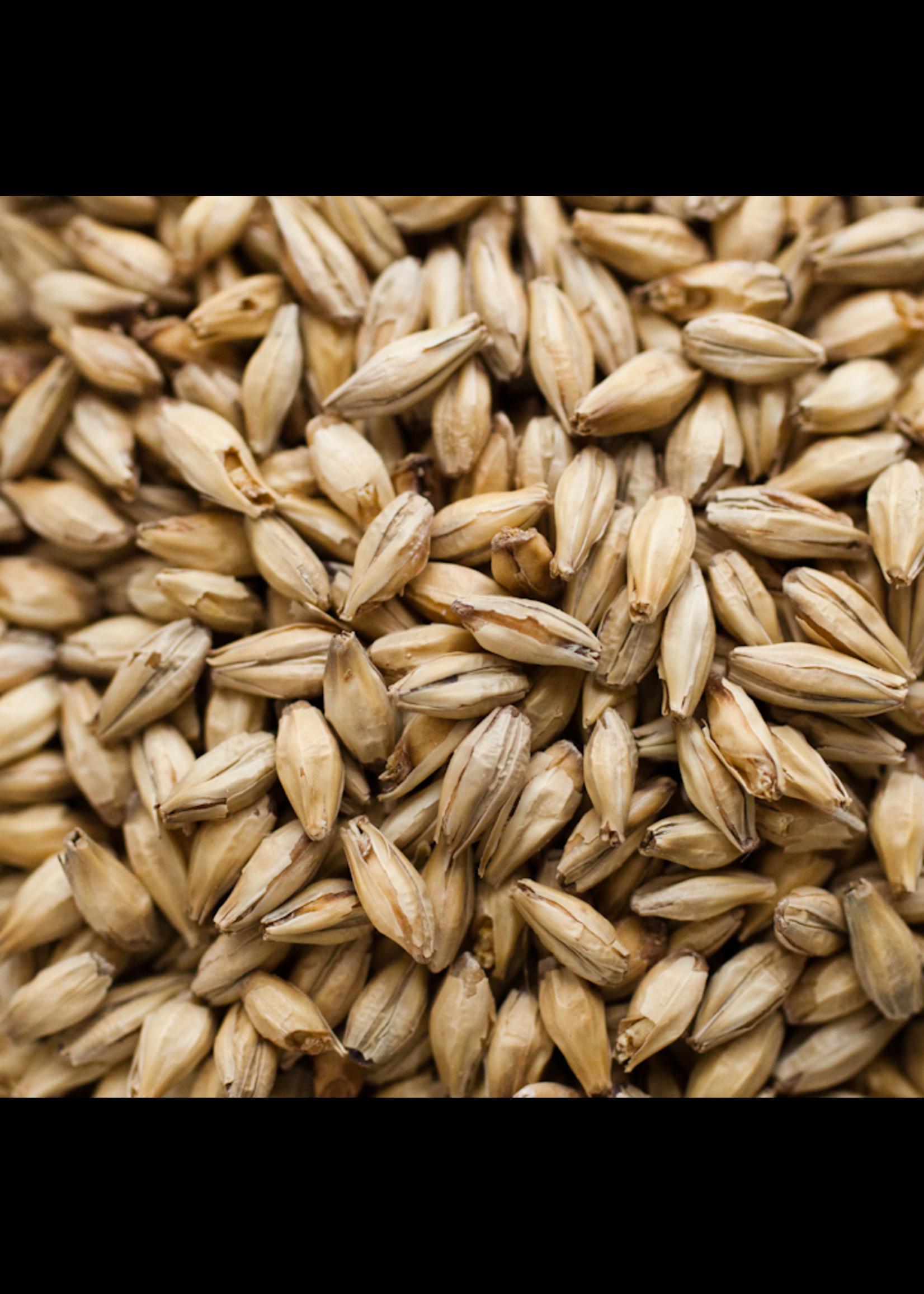 Grain Briess 2-Row Caramel 20L Malt - C38 - 1 LB