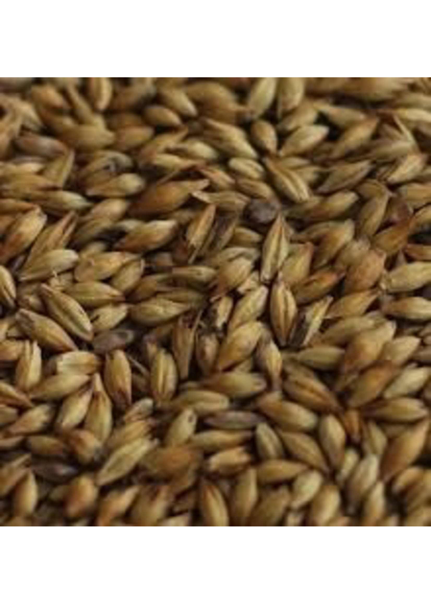 Grain Malteries Franco-Belges Caramel Vienna Malt - 55 LB (25 KG)