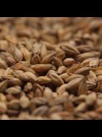 Grain Gambrinus Honey Malt - F46 - 1 LB