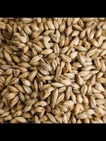 Grain Malteries Franco-Belges Pale Ale Malt - A14 - 1 LB