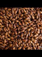 Grain Briess Carabrown Malt - D46 - 1 LB