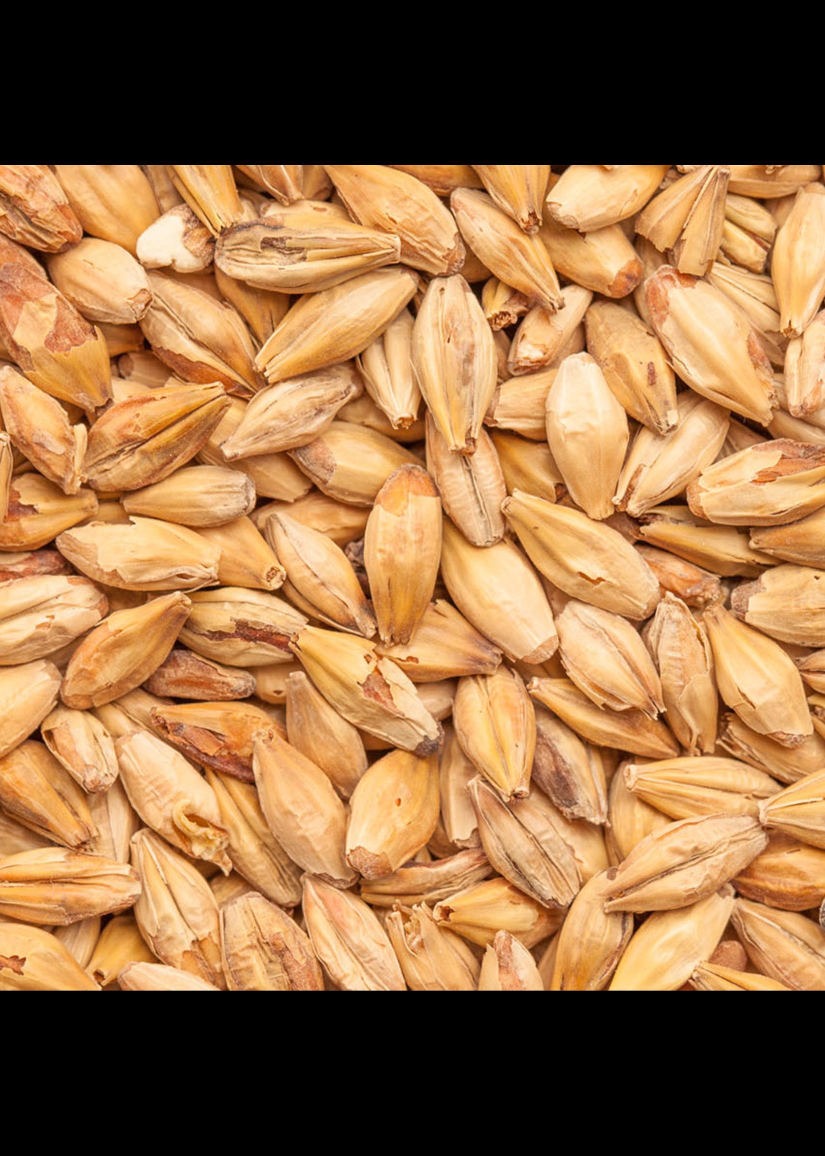 Grain Best Malz Melanoidin Malt - F1 - 1 LB