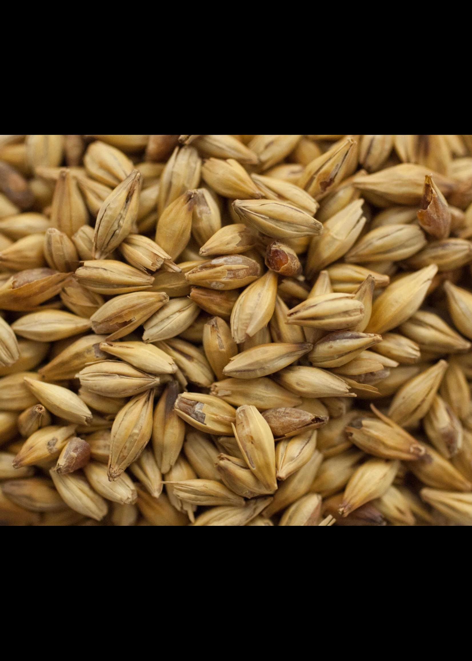 Grain Great Western Malting Co. Melanoidin Malt - A48 - 1 LB
