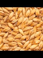 Grain Best Malz Smoked (Rauch) Malt - E9 - 1 LB