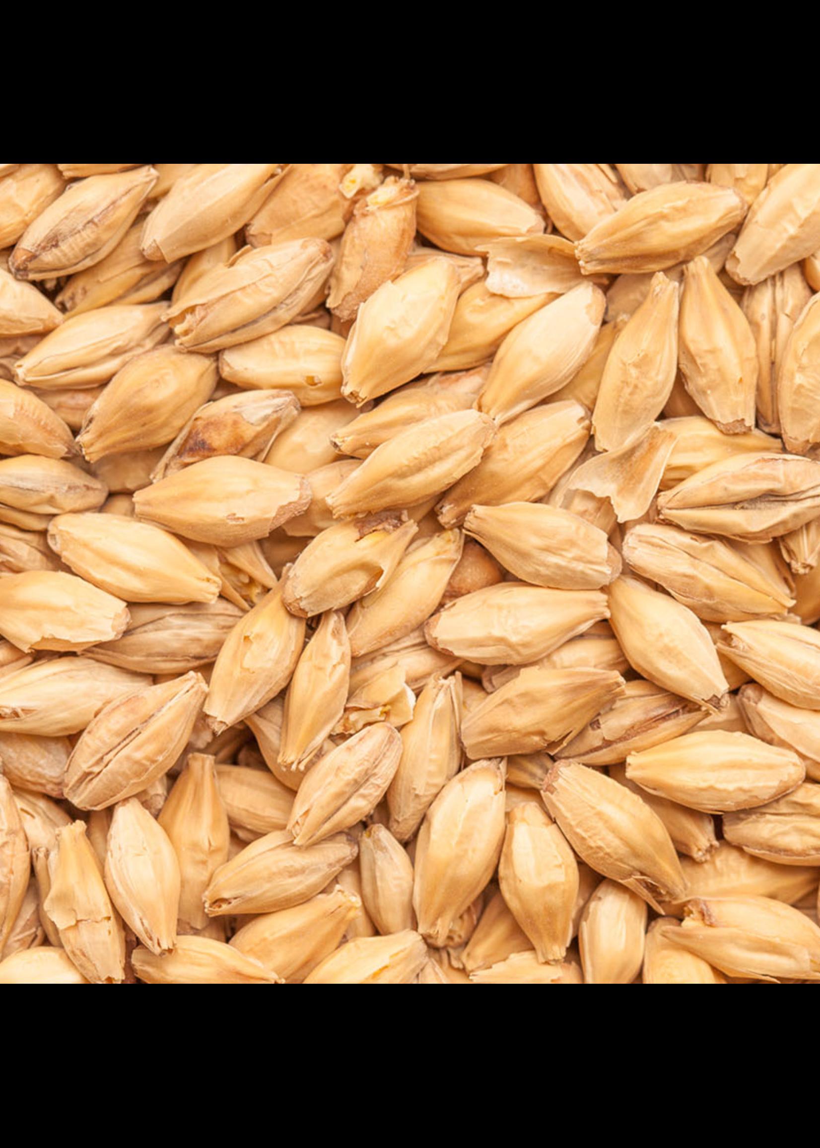 Grain Best Malz Heidelberg Malt - E7 - 1 LB