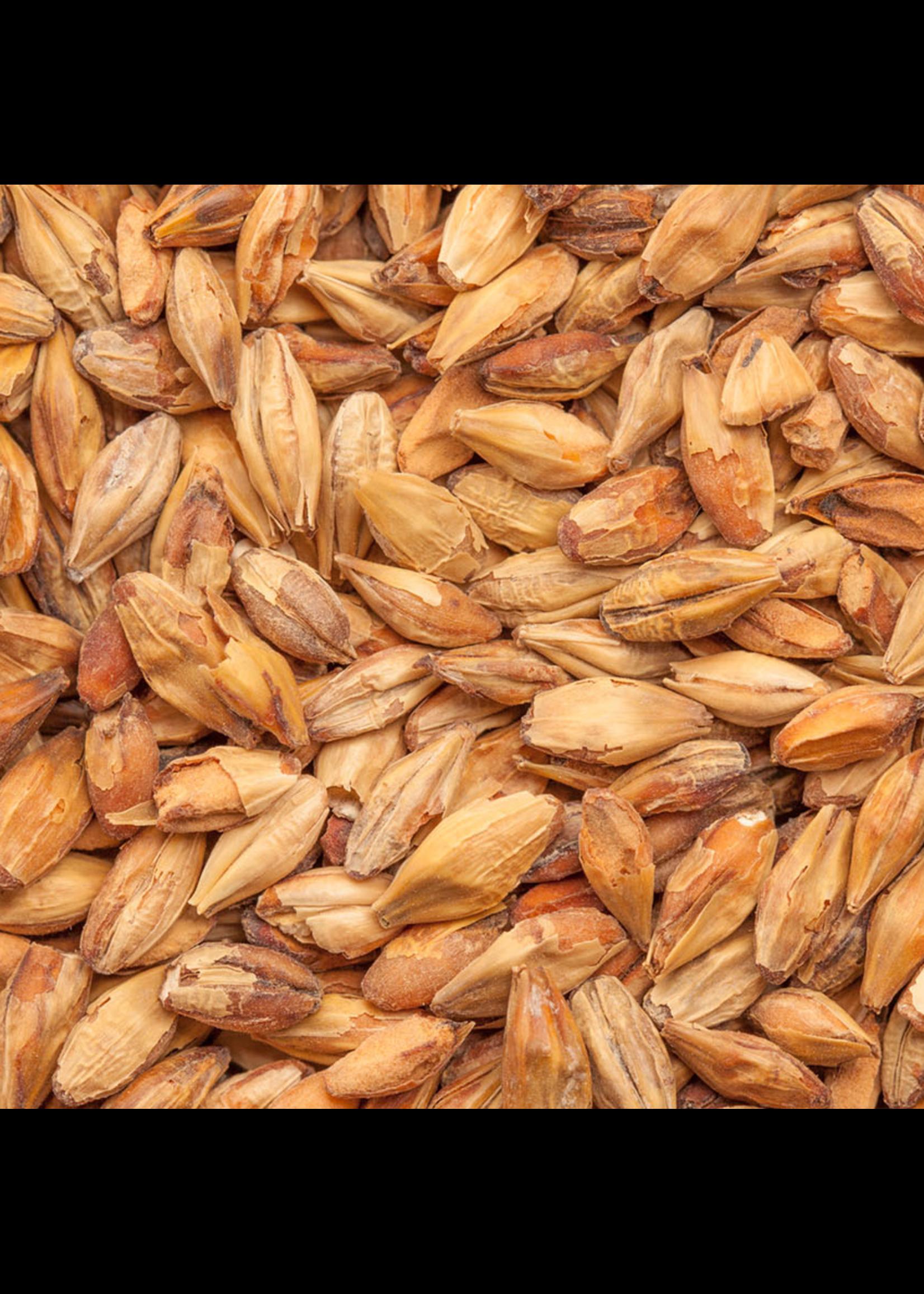 Grain Best Malz Caramel Munich Malt I (35L) - F6 - 1 LB