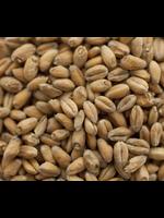 Grain Thomas Fawcett & Sons Wheat Malt - E32 - 1 LB