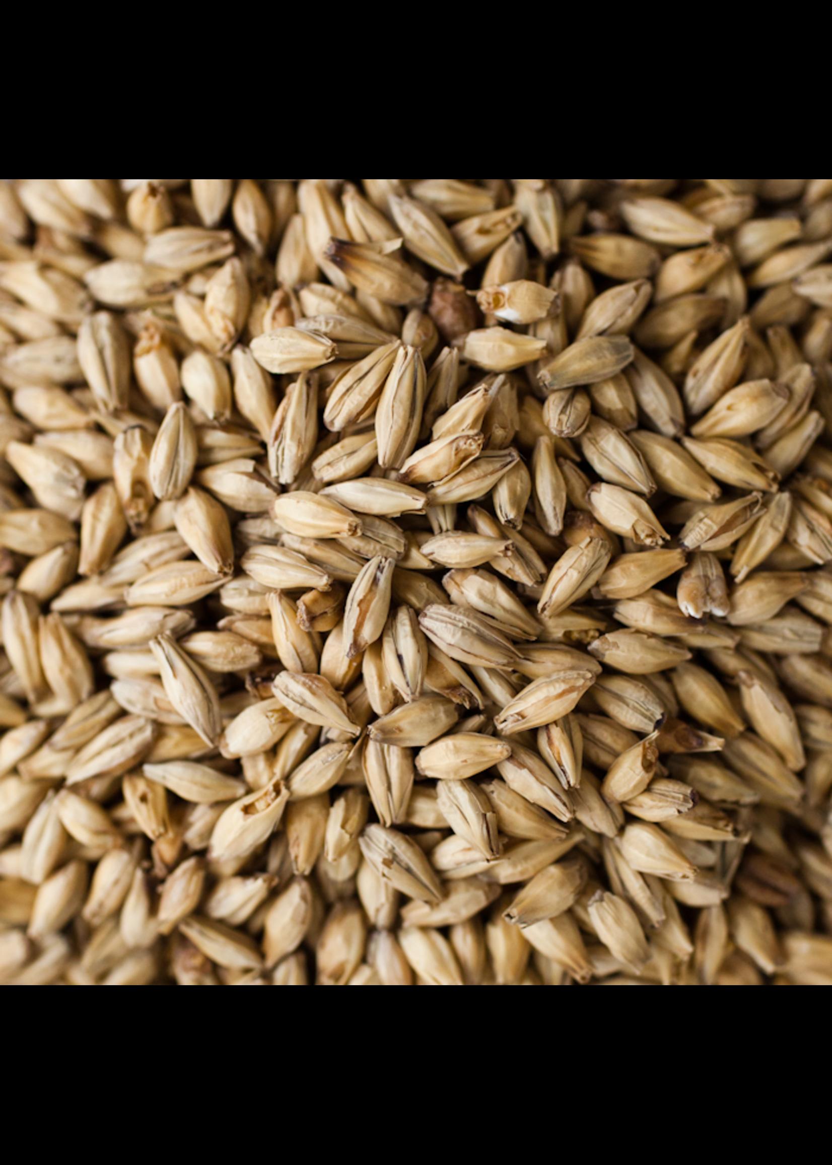 Grain Briess Pale Ale Malt - 10 LB