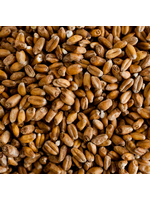 Grain Best Malz Spelt Malt - F10 - 1 LB