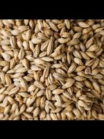 Grain Briess 2-Row Brewers Malt - 1 LB