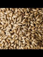 Grain Briess Bonlander Munich Malt - 10 LB