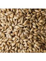 Grain Malteries Franco-Belges Special Aromatic Malt - A17 - 1 LB