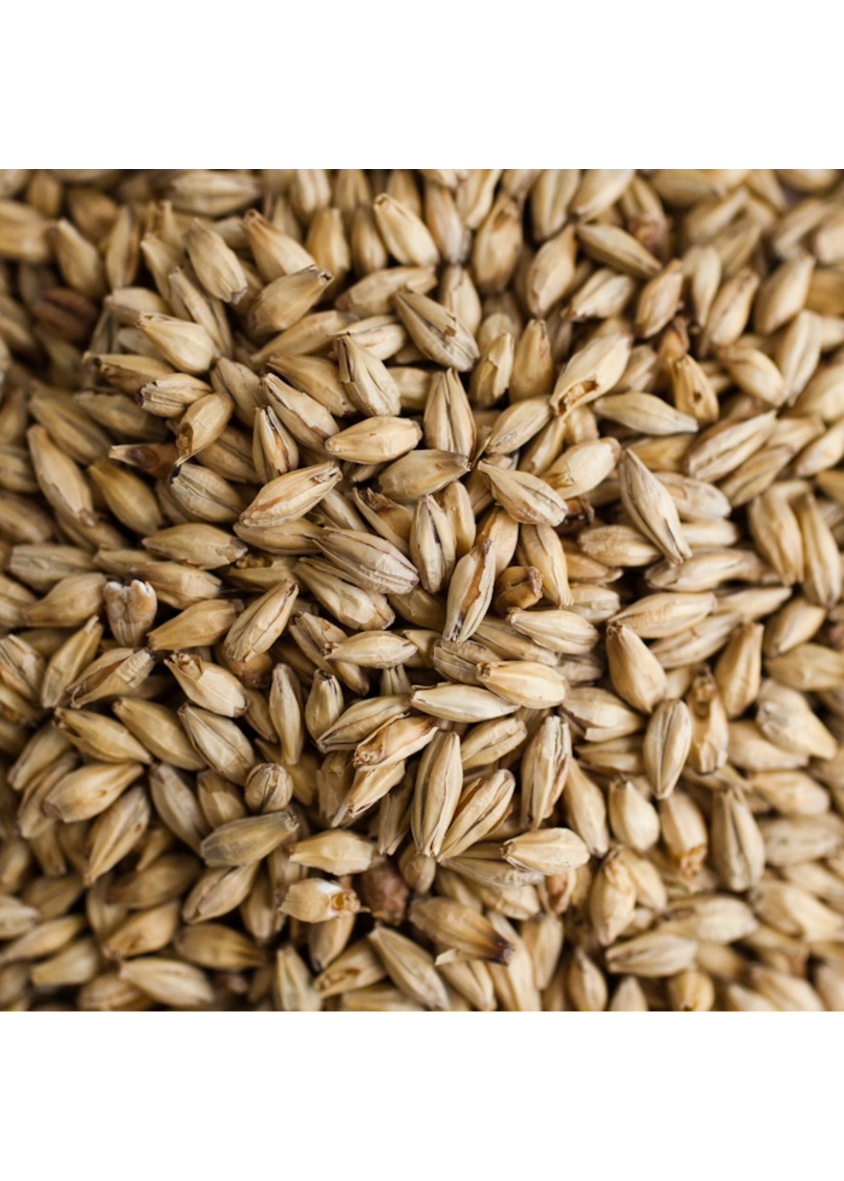 Grain Bairds Pale Malt - E15 - 1 LB - NLG