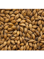 Grain Thomas Fawcett & Sons Amber Malt - D30 - 1 LB