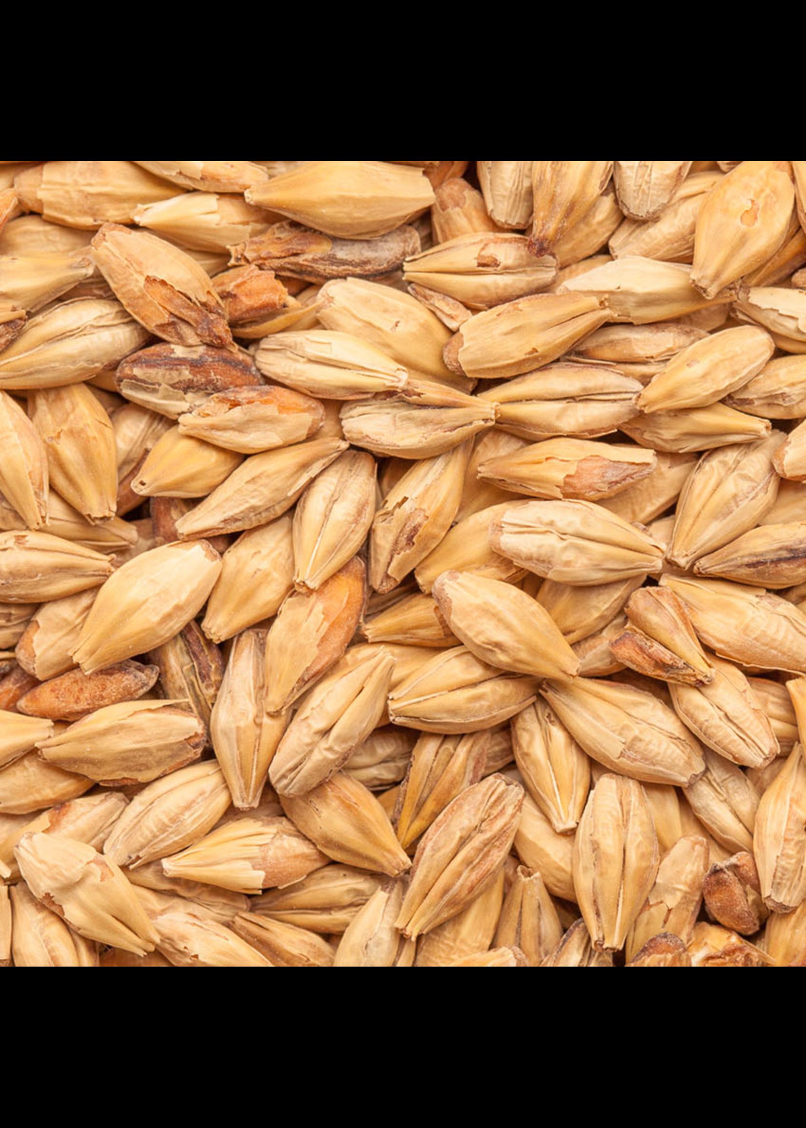 Grain Best Malz Caramel Hell (15L) - F4 - 1 LB